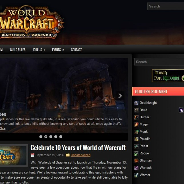for your guild or raidunion up to a leading guild